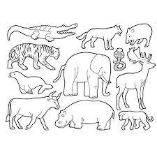 Coloriage Animaux de la Savane  savane  Pinterest
