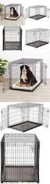best 20 big dog kennels ideas on pinterest doggie pool puppy