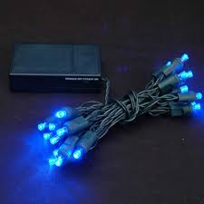 blue 20 light battery operated lights on green wire