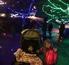 christmas lights at the zoo indianapolis christmas at the indianapolis zoo indy holiday traditions