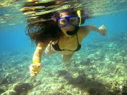 Snorkel the world 39 s shallowest shipwrecks