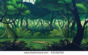 jungle stock images royalty free images u0026 vectors shutterstock