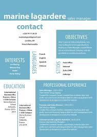 template for professional cv professional cv precise resume mycvfactory