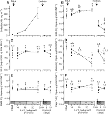 mla citation heart of darkness molt cycle regulation of protein synthesis in skeletal muscle of