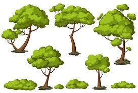 cartoon trees set objects creative market