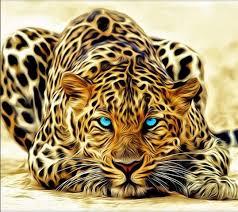 imagenes de animales whatsapp 45 fondos espectaculares divertidos y graciosos para whatsapp