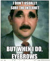 Funny Mean Memes - i don t usually surf the internet funny mean meme