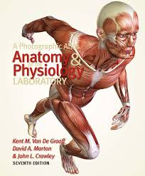 Human Anatomy Physiology Pdf A Photographic Atlas For The Anatomy And Physiology Laboratory