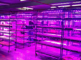 commercial led grow lights hd commercial led grow lights
