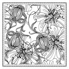 flower coloring books for adults 224 coloring page