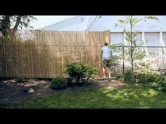 Backyard Privacy Ideas Cheap An Chain Link Fence Cover It Up With Rolled Bamboo