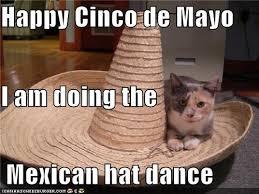 5 De Mayo Memes - happy cinco de mayo qrz forums