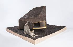 modern architect designed outdoor cat dwellings for charity