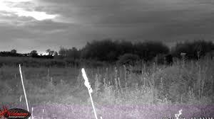 wildgame innovations lights out wildgame innovations crush x 20 mp lightsout trail camera proving in