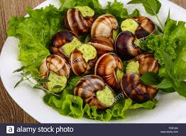 escargot cuisiné cuisine escargot with butter parsley and salat leaves