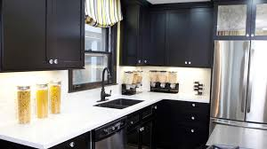 Exotic Wood Kitchen Cabinets Exotic Kitchen Cabinets Kitchen