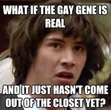 Closet Gay Meme - one stop gay shop