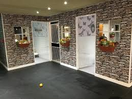 artificial grass for doggy daycare and dog kennels lawn world