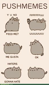Cartoon Cat Memes - memebase rage comics forever alone y u no guy troll face foul