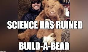 Build A Bear Meme - meme ing of life cuddly cow