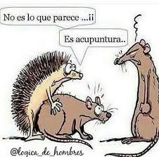 Acupuncture Meme - pin by g r on mensajes español pinterest