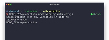 node js working with environment variables in node js twilio cloud