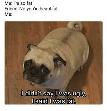 Fat Ugly Meme - me i m so fat friend no you re beautiful me l didn t say i was