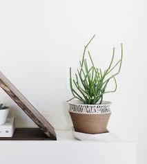 rustic urban ceramic planter home decor u0026 lighting convivial