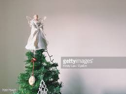 christmas tree stock photo getty images