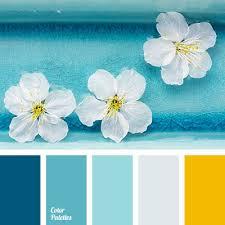 Color Scheme by Best 25 Color Schemes Ideas On Pinterest Color Pallets