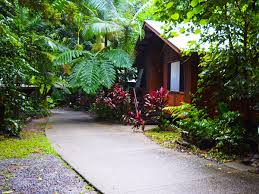 The Beach House Cape Tribulation by Jungle Tours And Trekking Tour Queensland