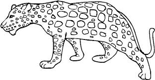 snow tiger coloring page leopard tiger on a tree branch coloring page wesmec site