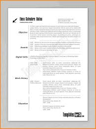 Sample Resume For Subway Sandwich Artist by Artistic Resume Example Artist Preview 8 Artistic Resume Example