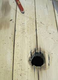 how to repair a in a hardwood floor the speckled goat how