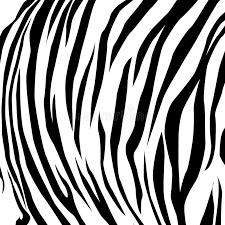 pattern drawing illustrator animal skin black and white tiger illustrator vector eps 10 stock