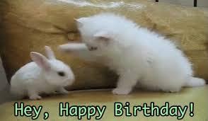 the popular hey happy birthday gifs everyone u0027s sharing