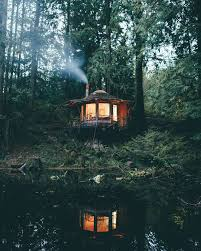 cool cabin very cool cabin deep in the woods satisfying things