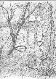 swamp drawing last sunday wetcanvas