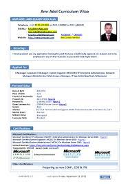 100 resume for network engineer 100 ccna resume sample
