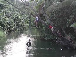 panoramio photo of kids playing in the panaluu stream as seen