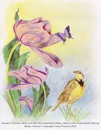 tanya provines fine art illustration graphic design coloring page