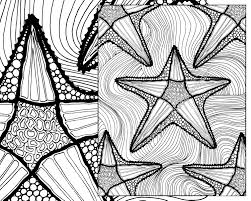 zentangle starfish coloring page coloring sheet