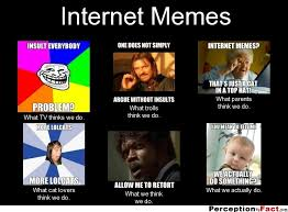 Do Memes - internet memes what people think i do what i really do