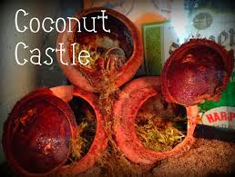 how to spoil your hermit crabs coconut castle 8 steps
