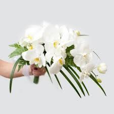 orchid bouquet orchid bouquet