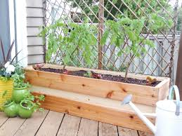 planting for privacy diy wood planter just decorate patio