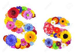 s letter s of flower alphabet isolated on white letter consist