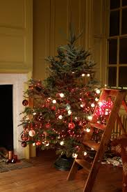 tree branch decorations in the home christmas tree fails mistakes for christmas trees