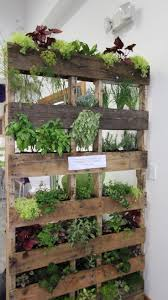 43 best vertical herb gardens images on pinterest vertical herb