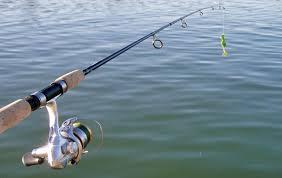 Equipos ideales de pesca